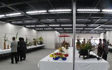 富田林市民文化祭 茶華道大会