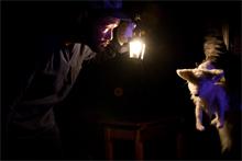 夏・劇!すばる演劇フェスティバル2012 劇団KIO「FOXES きつね」画像