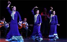-ミゲル・アンヘル フラメンコ舞踊団-アンダルシア~情熱の瞬間~